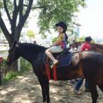 Sbado a cavalo  Passamos o dia hoje no jockeyclubdesaopaulohellip